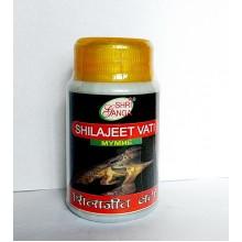 Shri Ganga - Шиладжит (Shilajit) (50грамм - 150таб)